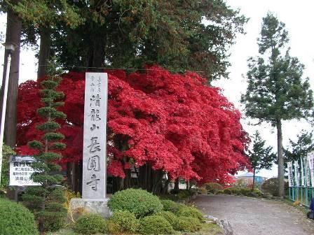 長円寺1.jpg