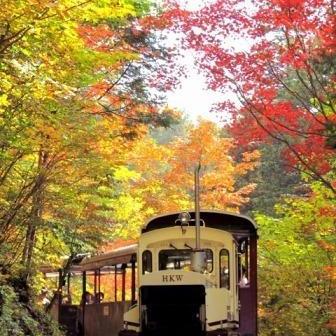 【蓼科のスタッフが厳選♪】10月の秋旅セレクション