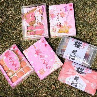 桜商品が届きました