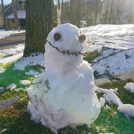 プライベートガーデンの雪だるま